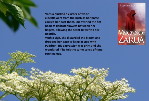 varnia and elderflower scene for blog tour