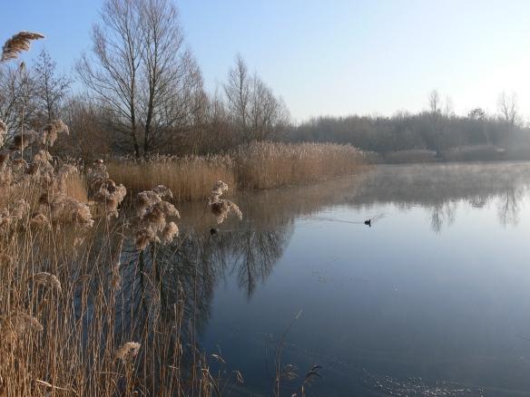 photos-jan-to-mar-2012-047